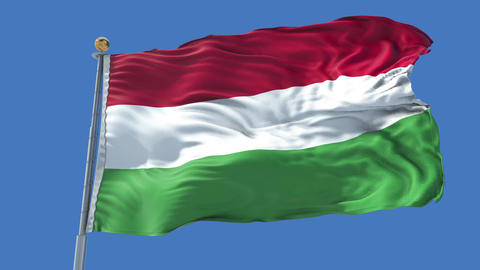 Hungary animated flag pack in 3D and isolated background Animation