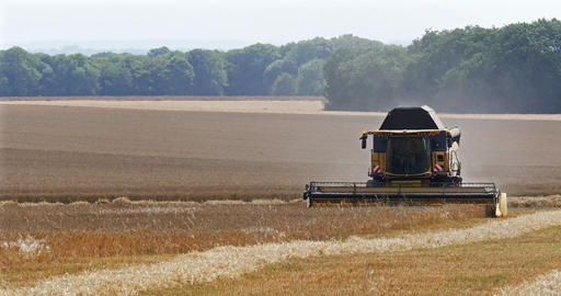 Combine harvester near Basly in Normandy, Real Time 4K Live Action