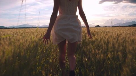 Slow motion - Behind a girl in a white dress running through yellow wheat field Footage