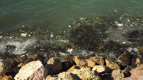 Garbage in the Mediterranean Sea. Environmental pollution. Harm to animals Live Action