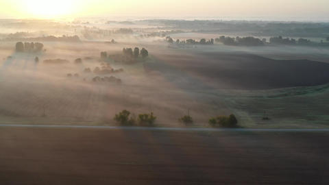 Summer sunrise and beautiful morning mist over asphalt road and farmland fields, aerial view Live Action
