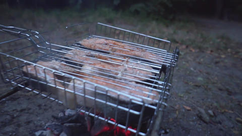 Rest at nature. Dishes at the stake. Dishes on the barbecue grill Live Action