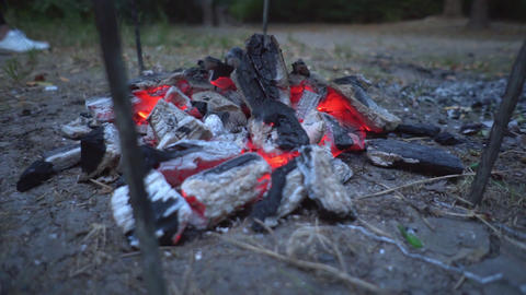 A stream of smoke comes out of red hot coals. Barbecue concept, fire concept Live Action