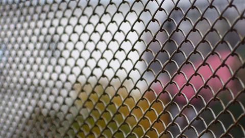 Metal mesh fence. Mesh netting, fencing Live Action