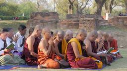 Monks praing at monastery ruins around Dhamekh Stupa,Sarnath,India Footage