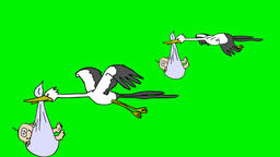 STORKS BRINGS BABY Storks bringing baby.2D animation.HD 1080.Green screen/alpha  Animation