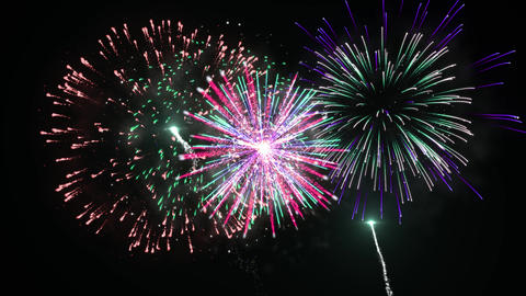 Multiple Colorfull Fireworks in a Clear Dark Background Animation