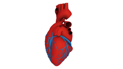 heart model Stock Video Footage