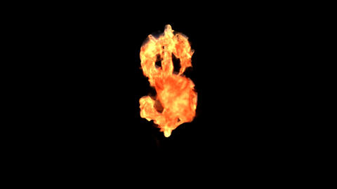 fire dollar Stock Video Footage