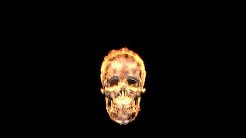 fire skull Stock Video Footage