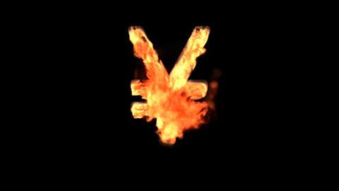 fire yen Stock Video Footage