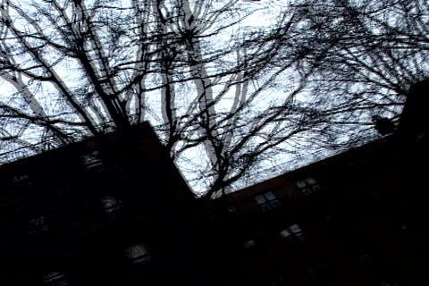 /Marcy_Projects_Skyline-PhotoJPEG_SD.zip Stock Video Footage
