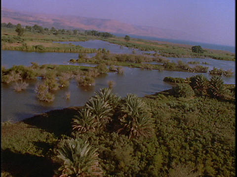 Palms line the shore of a shallow estuary in this... Stock Video Footage