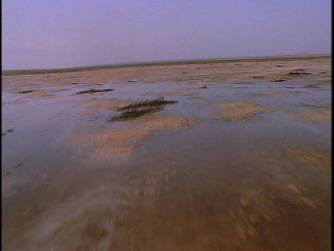 Puddles spot the salt flats Stock Video Footage