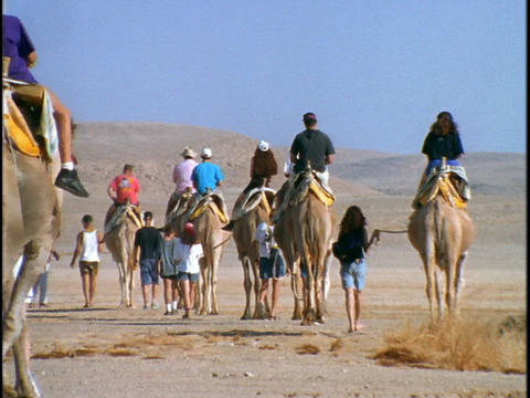 Tourists ride camels through a desert in Israel Stock Video Footage