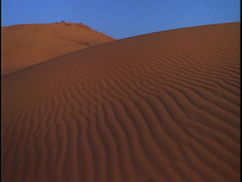 Sand dunes stretch into the distance Stock Video Footage