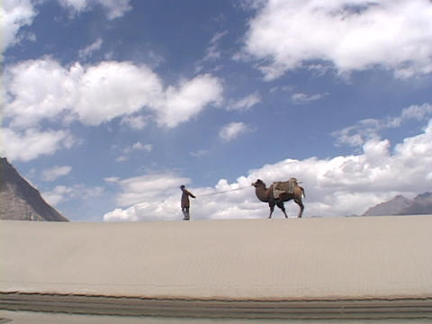 A man leads his camel across the desert Footage