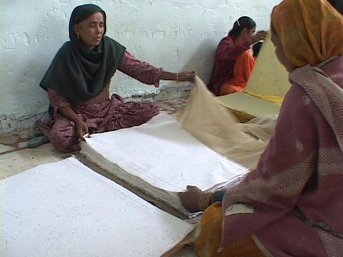 Factory workers sort paper Footage