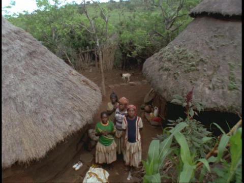 Cone-shaped roofs top houses in a small African village Footage