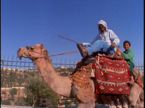 A man and his son ride a camel Stock Video Footage