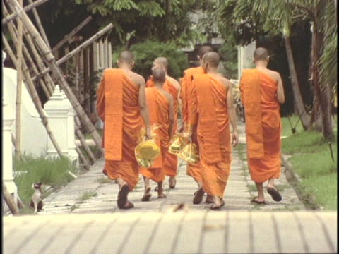 Buddhist monks slowly stroll through the monastery Footage