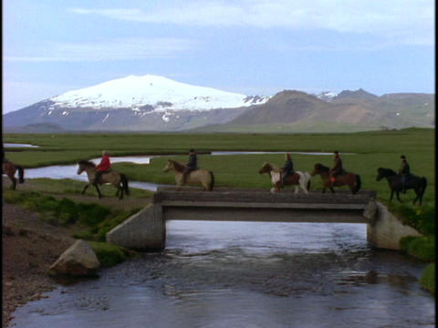 Icelandic ponies cross a river in Iceland Footage