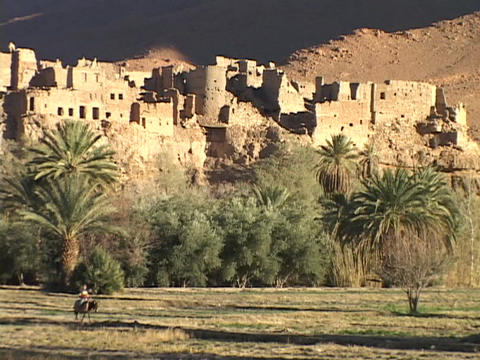 A Moroccan man rides a donkey past a desert fortress Stock Video Footage