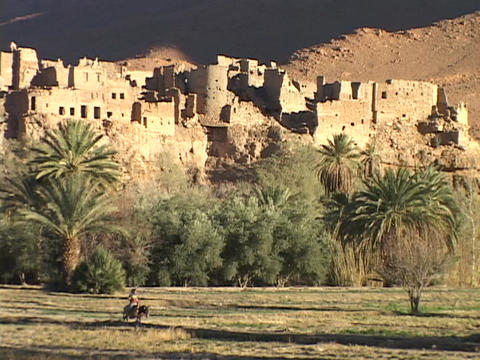 A Moroccan man rides a donkey past a desert fortress Footage