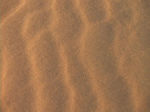 Desert sand blows across the desert floor Stock Video Footage