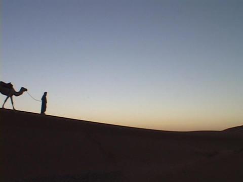 A camel train travels across a desert Stock Video Footage