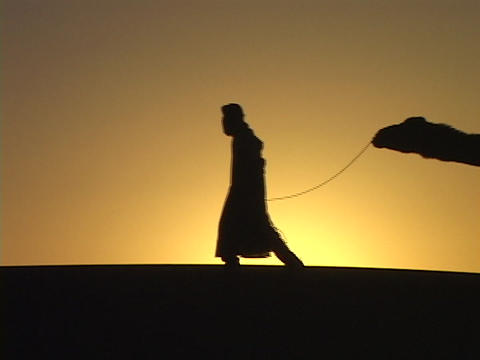 """A man leads camels through the desert along the Silk Road."""""""" Stock Video Footage"""