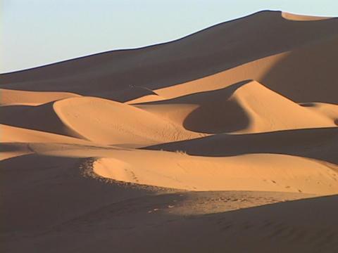 Desert sand blows across the desert floor Stock Video Footage