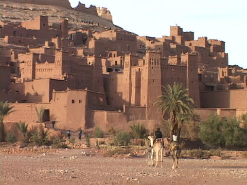 Camels walk toward an small town in Morocco Stock Video Footage