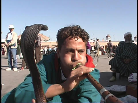 A snake charmer works on the streets of Marrakesh, Morocco Stock Video Footage