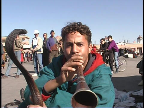 A snake charmer works on the streets of Marrakesh, Morocco Footage