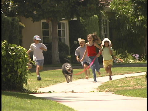 Children run down a street with a dog Stock Video Footage