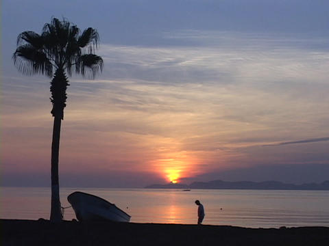 A silhouetted palm tree with boat tied to it rests on a beach that a man walks across during golden Footage