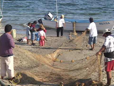 A groups of Mexican fishermen haul a net from a boat Live Action