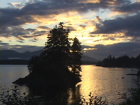 Silhouetted trees stand on a island in the middle of a... Stock Video Footage