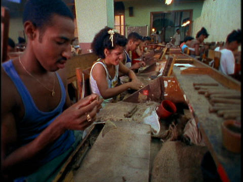 Men and women work together in a cigar factory in Havana, Cuba Footage