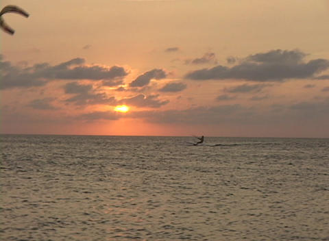 Windsurfers surf across the water during golden-hour Stock Video Footage