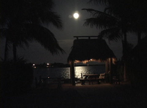 The moonlight shimmers across the water near a tropical... Stock Video Footage