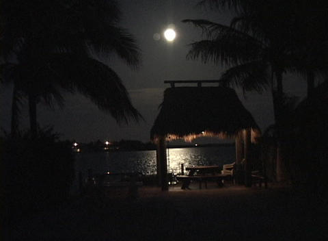 The moonlight shimmers across the water near a tropical picnic area Footage