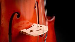 Violin or viola gyrating at black background Footage