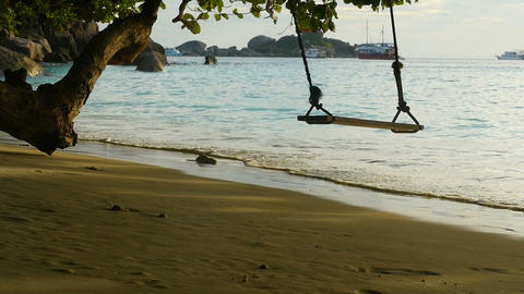 A rope swings on the beach Live Action