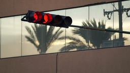 Traffic Light Turns Green Palm Tree Reflection Footage