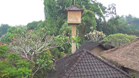 rainy season scenery in Bali island, Indonesia ビデオ