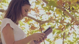 Student graduate studying on tablet pc wireless technology in autumn tree Footage