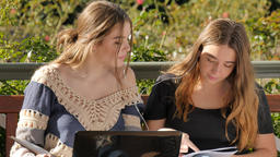 Two best friends student woman sitting in park helping each other study laptop Footage
