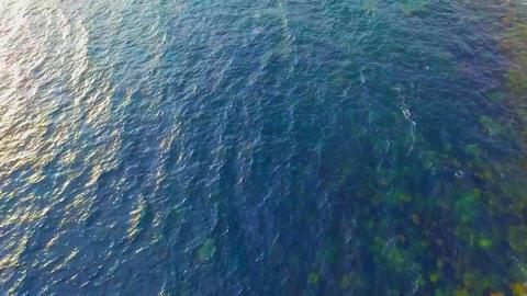 drone_manazuru003 ビデオ